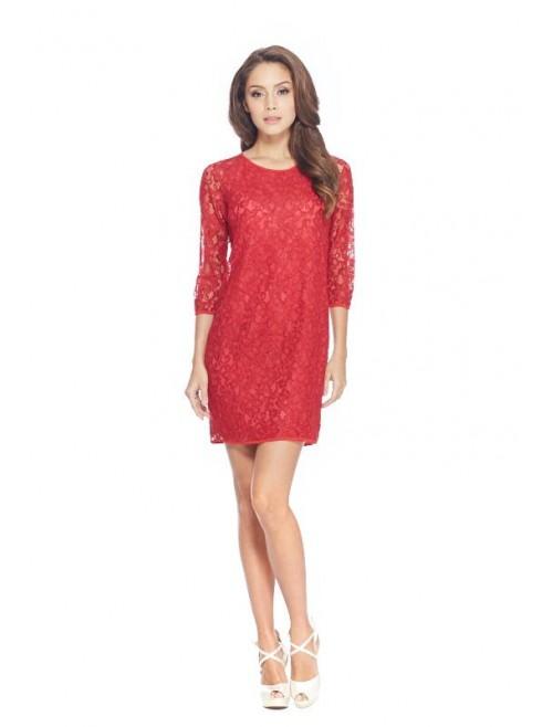 Straight Cut Lace Dress